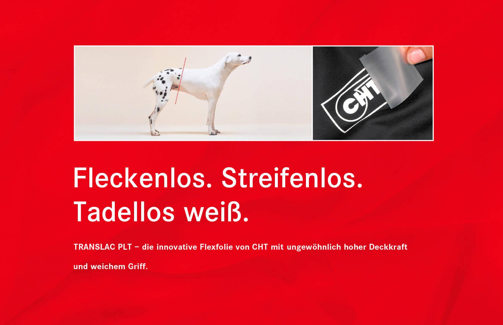 In einer Anzeige steht ein Dalmatiner, der von Bauch bis Kopf keine Flecken hat, die makellose Qualität der Textilfolie von CHT.